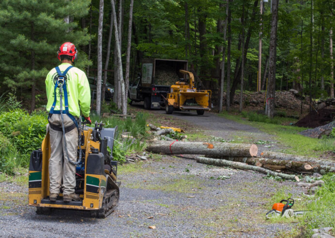 Emergency Tree Removal-Lakeland FL Tree Trimming and Stump Grinding Services-We Offer Tree Trimming Services, Tree Removal, Tree Pruning, Tree Cutting, Residential and Commercial Tree Trimming Services, Storm Damage, Emergency Tree Removal, Land Clearing, Tree Companies, Tree Care Service, Stump Grinding, and we're the Best Tree Trimming Company Near You Guaranteed!