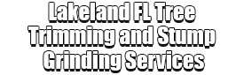 Lakeland FL Tree Trimming and Stump Grinding Services